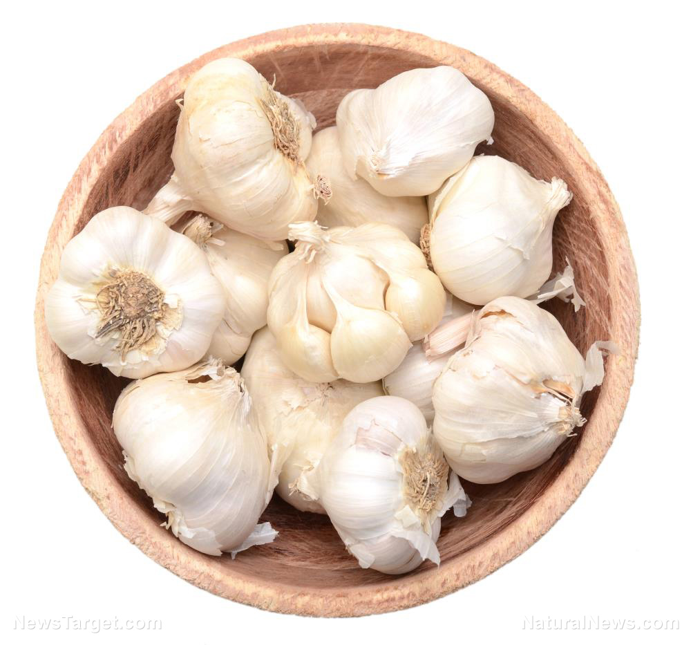 Science proves that garlic is an effective anti cancer superfood