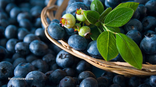 10 Best benefits of blueberries for skin, hair and health